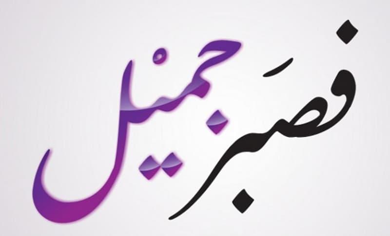قصة قريش مع الرسول من ناحية إيذاء قريش للرسول محمد